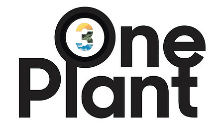 My Florida Green : OnePlant, FORMERLY 3 BOYS